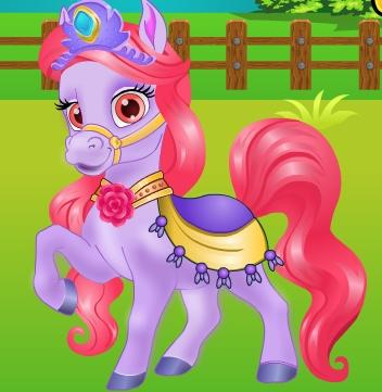 Pretty Pony Grooming