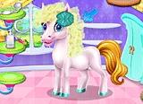 Pony Spa Salon
